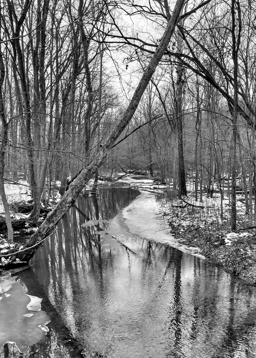 hubbard-valley-creek-bw-01