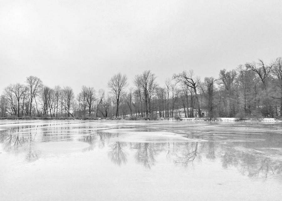 river-styx-pond-reflections-bw-01